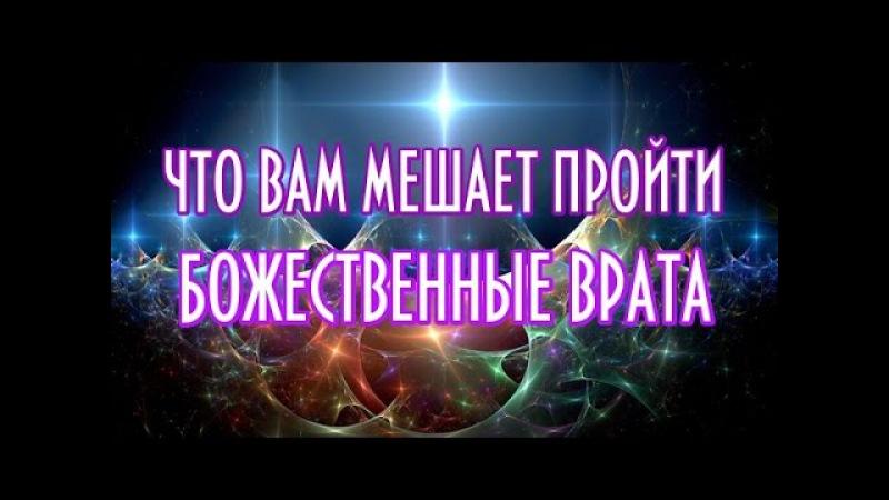 ЧТО ВАМ МЕШАЕТ ПРОЙТИ БОЖЕСТВЕННЫЕ ВРАТА-ченнелинг