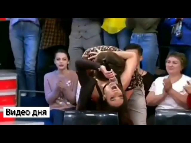 Малахов держи себя в руках 😅 Видео Дня » Freewka.com - Смотреть онлайн в хорощем качестве