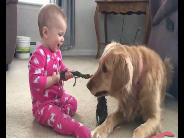 Baby Love Dog Dla Wszystkich moich Kochanych Wnuczków Babcia Ola Song 153 Vide Aleksandra Pławińska