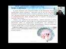 Эйдетика Мнемотехника - операционная система для мозга Дмитрий Лозенко snail org ua