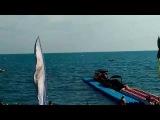 Крым, Судак, пляж и набережная вечером 20 июня 2017, пляжные вести