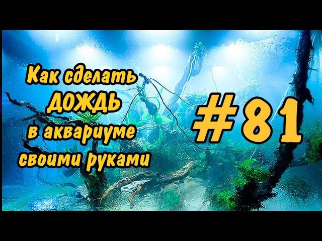 81 Как сделать дождь в аквариуме, палюдариуме своими руками. Rain in the aquarium, paludariums DIY