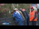 В Барнауле задержали подозреваемых в вандализме, которые скинули шары с моста ч ...