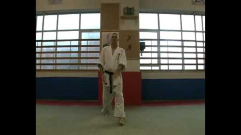 Tegatana Dosa Shodokan Aikido