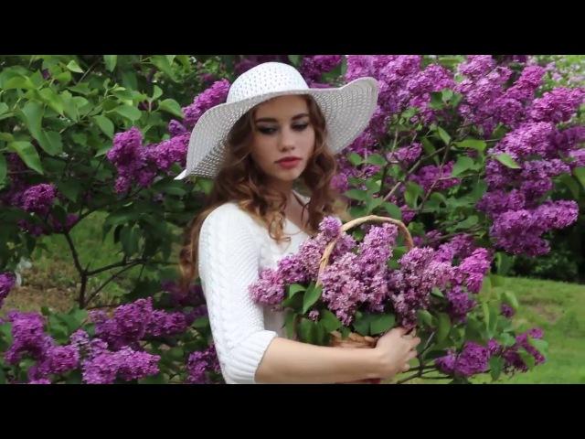 FotoFest Lilac color