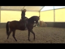 Предварительны приз Юноши Арина 13 лет Только тренируемся Лошади 7 лет