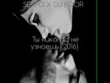SERPO x DJ BOOR - Ты никогда не узнаешь (2016) ( 1080 X 1088 )