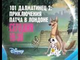 101 далматинец 2 Приключения Патча в Лондоне / 101 Dalmatians II: Patchs London Adventure на Канале Disney!