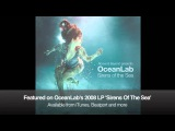 Above &amp Beyond pres. OceanLab - I Am What I Am