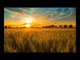 Alex M.O.R.P.H. - New Harvest (New Club Mix)