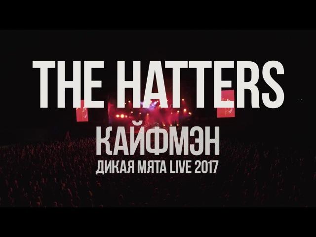 THE HATTERS - Кайфмэн (live Дикая Мята 2017)