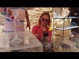 Mariana Mastering The Art of Glass