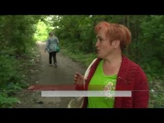 Короткий путь с Южной Поляны до Кривозерья утопает в отходах