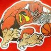 Falcon Moscow Basketball