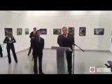В сети появилось новое видео с места убийства российского посла Андрея Карлова в Турции.