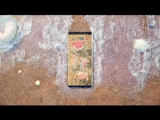 Galaxy S8 | S8+