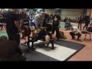 Болобан Євгеній 176 кг, власна вага 73,2 кг