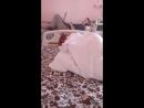 Еще не спящая красавица 2