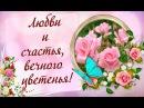 Желаю Вам любви и счастья, вечного цветенья!