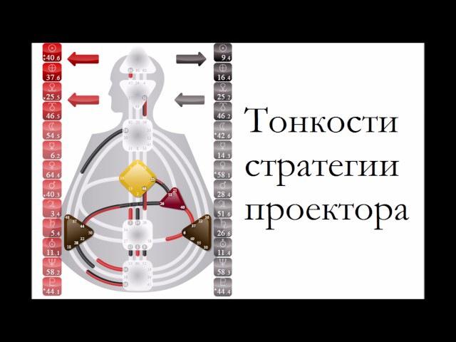 Дизайн человека Проектор. Тонкости стратегии