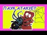 Желейный медведь против пауков Пауки атакуют желейного мишку