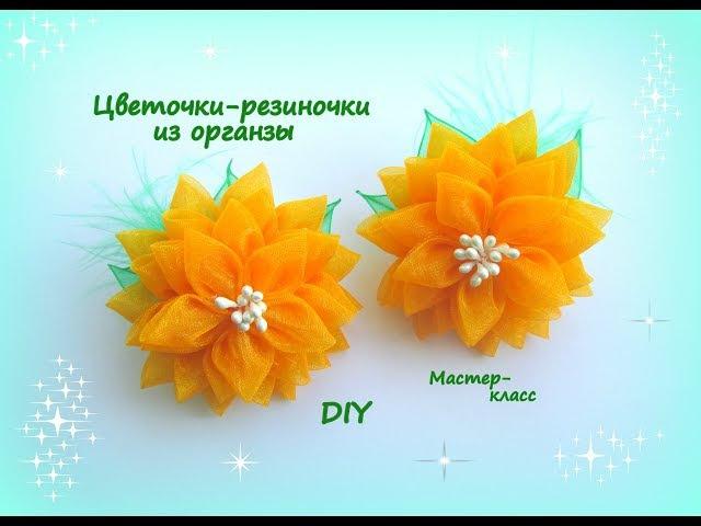 Цветочки-резиночки из органзы. /МК/Hand мade/DIY/ Kanzashi