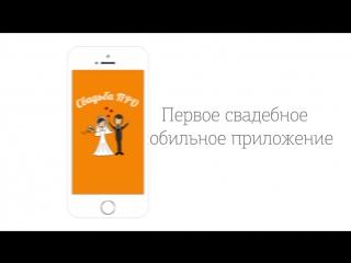 Приложение Свадьба ПРО - скачай в AppStore и Play Market