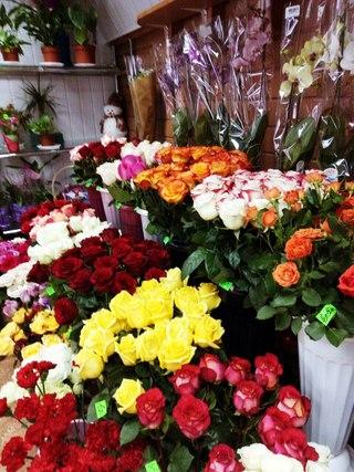 Купить цветы в гродно дешево магазин цветов орхидея