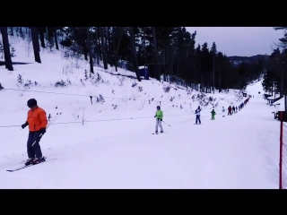 Бобровый Лог 2017