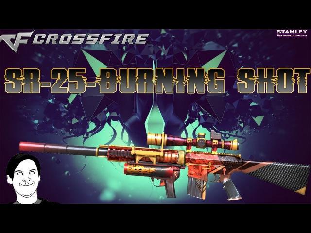 Выиграл Knight SR-25-Burning Shot