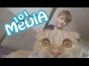 Приколы 2017 МАЙ про животных смешные животные коты и кошки собаки котята мои пито...