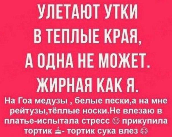 https://pp.userapi.com/c638631/v638631240/5a944/zxGwJAzTCg4.jpg