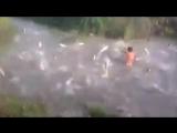 Встреча с рыбачком - эмоции через край!