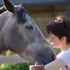 Воспитание лошади, содержание, амуниция