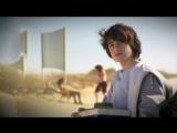 Крабы в песке (Израиль, 2012)