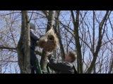 Белые Вороны провели акцию Дм для птаха