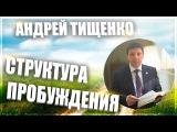 Структура Пробуждения Пастор Андрей Тищенко Новое поколение
