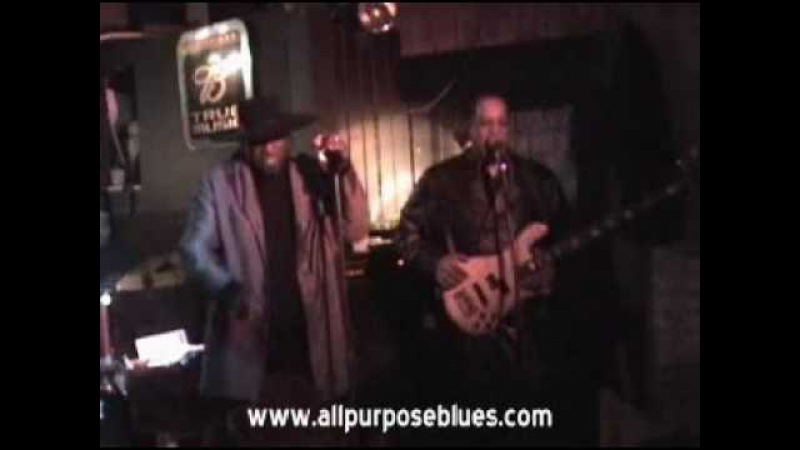 All Purpose Blues Band Kiss My Ass Baby