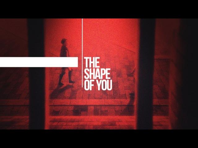 Shape of You [ErwinLevi]