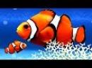 Мультики для самых маленьких: Что это, Мойа? Развивающий мультик, 21 серия. Подвод ...