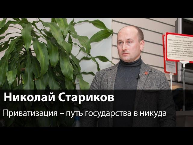 Николай Стариков: Приватизация – путь государства в никуда