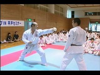 Техника Кумитэ - Seiji Nishimura - Wado-Ryu Kumite Technique Seminar - part7