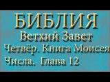 Библия.Ветхий завет.Четвёртая книга Моисея Числа.Глава 12.