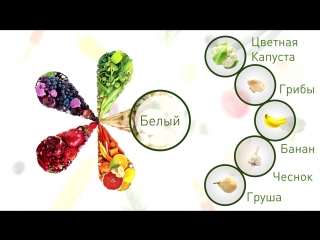 Nutrilite - 5 цветов питания - белый