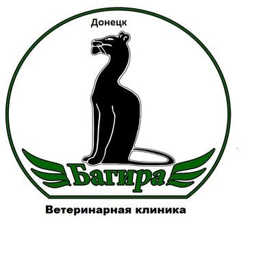 Светлана Вычигина