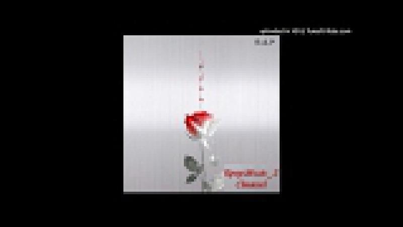 [Single] 비에이피 (B.A.P) - DYSTOPIA [ROSE album]