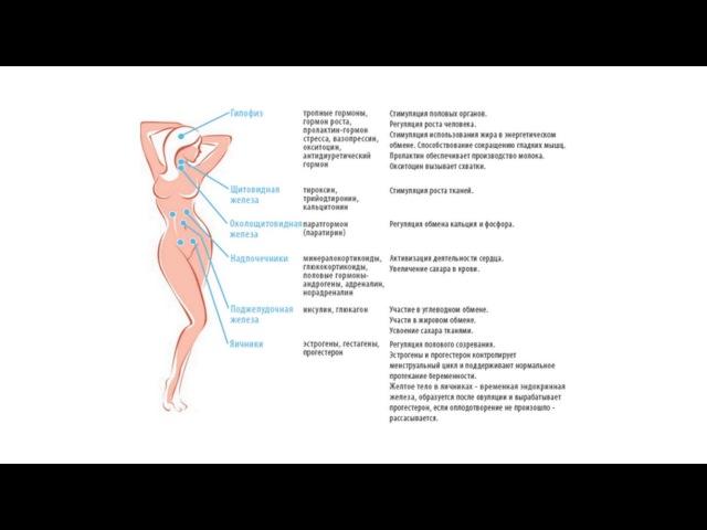 Восстановить гормональный баланс естественным способом
