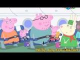 Свинка Пеппа RYTP Poop Swaggy Пуппа 19