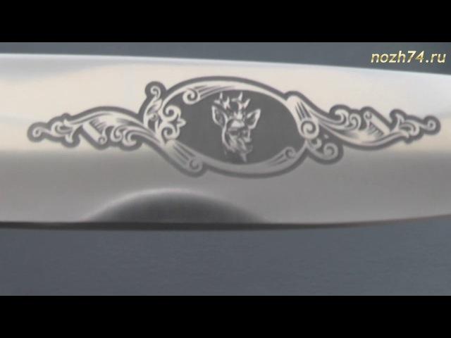 Нож Овощной (Граб, 110Х18М-ШД) - nozh74.ru