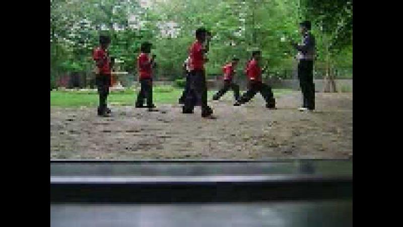 DDC Adalt Kung Fu Training Class ( India )